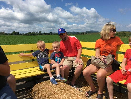Richfield Springs, NY: Hayrides are always fun for the family