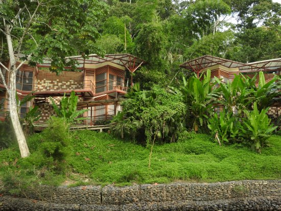 Napo Province, Ecuador: Arriving at the lodge