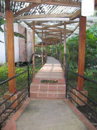 Napo Province, Ecuador: covered walkways to the rooms