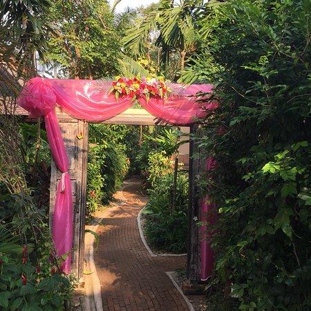 Rabbit Resort Pattaya: photo5.jpg