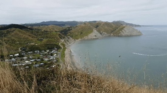 Mahia Beach, New Zealand: From top of hill