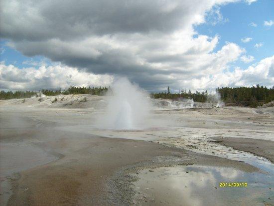 Norris Geyser Basin - Yellowstone NP