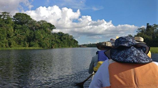 Puerto Alegría, Perú: La reserva cuenta con una laguna donde se pueden ver muchos animales.
