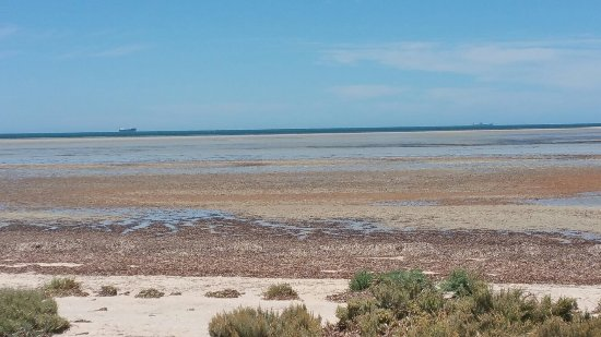 Discovery Parks - Whyalla Foreshore: 20180115_140603_large.jpg