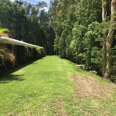 Tea Gardens, Australia: photo2.jpg
