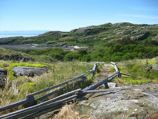 Mansons Landing, Canada: Trail on the island.