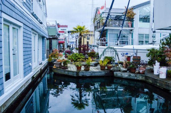 Granville Island Sightseeing and