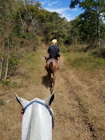 Artola, คอสตาริกา: Horseback on the trail