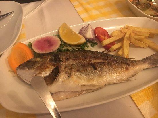 Amazing hospitality & fish