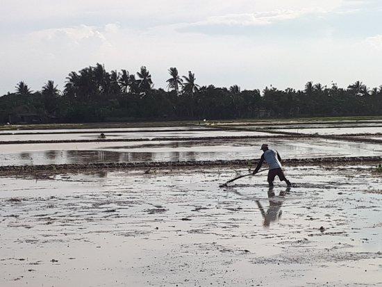 Karawang, Indonesien: Kehidupan desa seputar Blandongan