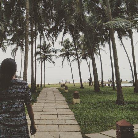 Ashvem Beach, India: IMG_20170923_121706_775_large.jpg