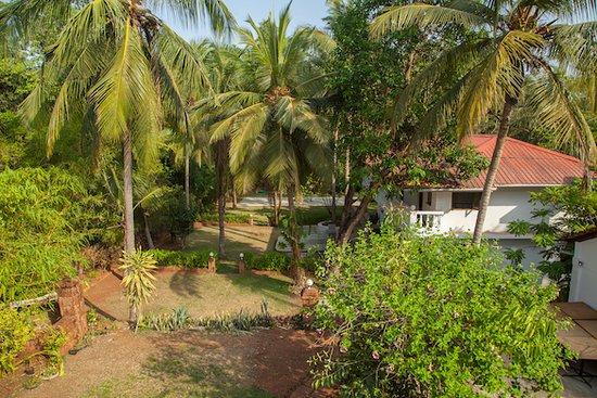 Divar Island 사진