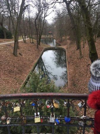 Arboretum Oleksandriya: декабрь 2017