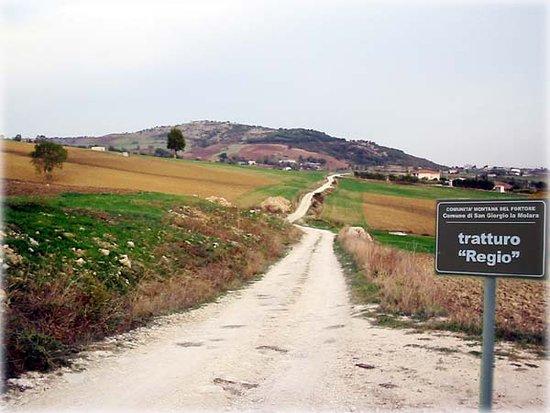 Buonalbergo, Италия: Tratturo Pescasseroli - Candela in direzione monte Chiodo