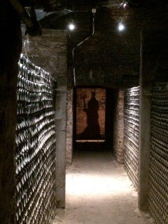 Pirque, Chile: Local lindo....vinhos muito bons..visita obrigatória...Atendimento muito bom..degustação maravil