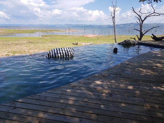 Lake Kariba, Zimbabwe: 20180103_143410_large.jpg