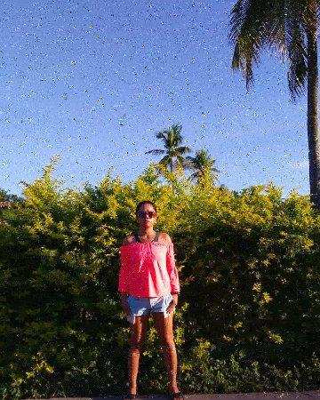Moalboal Beach Resort: IMG_20180118_171106_306_large.jpg