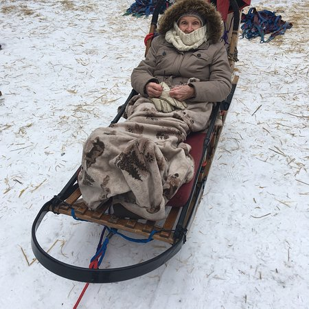 Winterdance Dogsled Tours: photo0.jpg