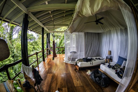 La Loma Jungle Lodge and Chocolate Farm: cabin