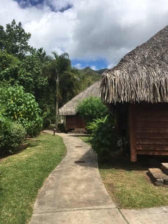 Manava Beach Resort & Spa - Moorea Photo