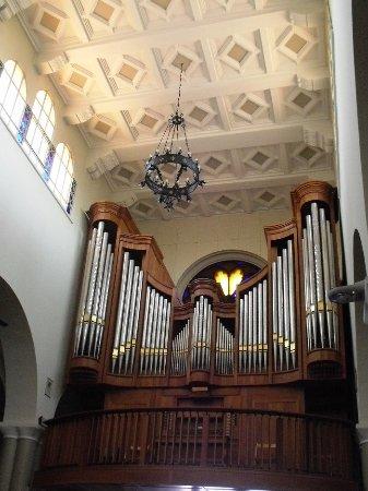 Senigallia, Italia: Organo