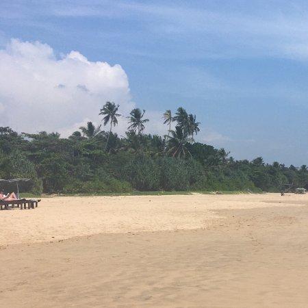 Talalla, Sri Lanka: photo3.jpg