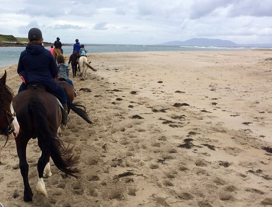 Island View Riding Stables: Strandritt