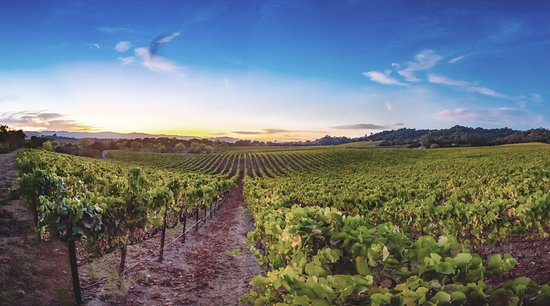 Windsor, Kalifornien: Notre Vue is located in Sonoma County overlooking 710 breathtaking acres.