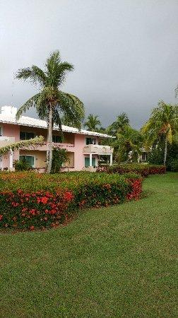 Paradisus Rio de Oro Resort & Spa: 20180110_123750_large.jpg