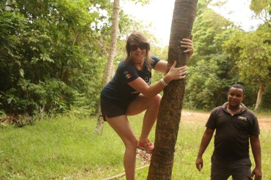 Yaaman Adventure Park : You get to climb a coconut tree!
