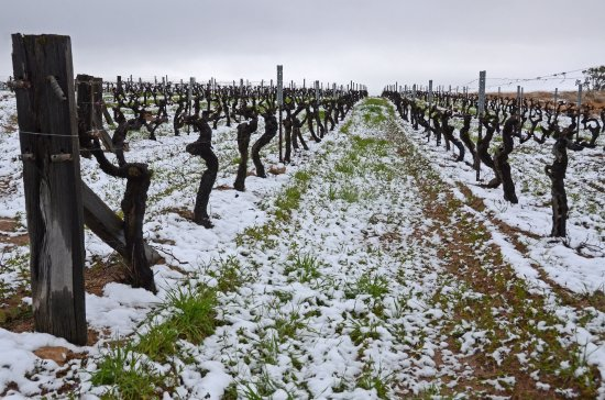 Ballandean, Australia: Yes it snowed!
