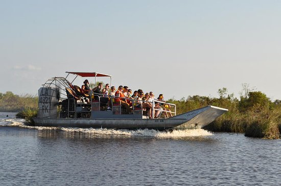 Louisiana Wetlands Airboat Ride...