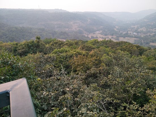 The Machan: View from the balcony of the room
