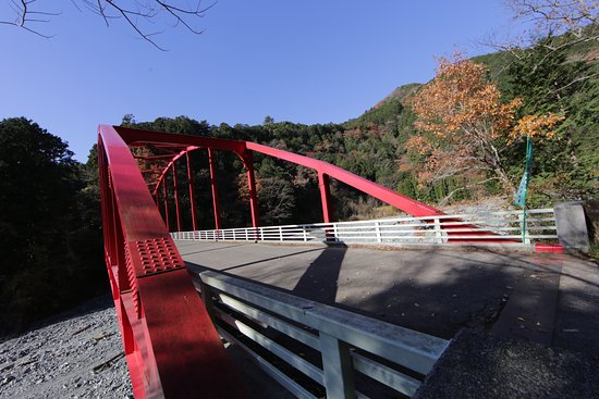 Yadoriki Forest