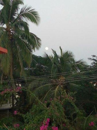 Oyo 3275 Near Titos Lane Goa Calangute Hotel Reviews