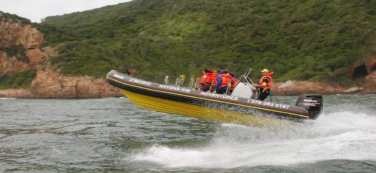 Knysna RIB Adventures: Another lucky group of adventurers passing us!
