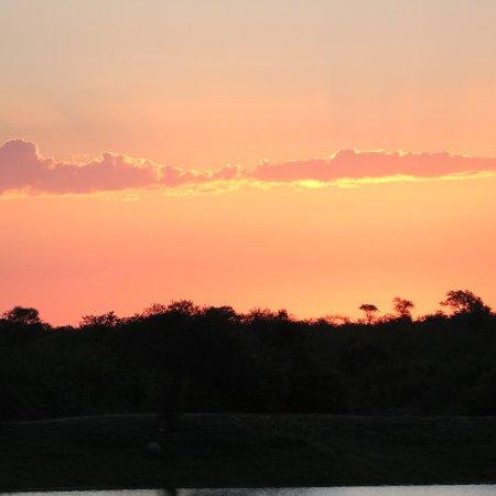 Timbavati Private Nature Reserve, Zuid-Afrika: photo7.jpg