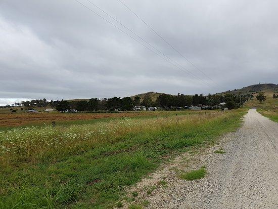 كيلارني فيو كابينز آند كارافان بارك: Surrounding farm land. Access via sealed and unsealed road.