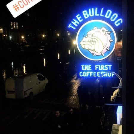 The Bulldog Hotel: photo0.jpg