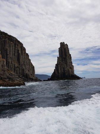 Tasman Island Cruises : 20180118_114025_large.jpg