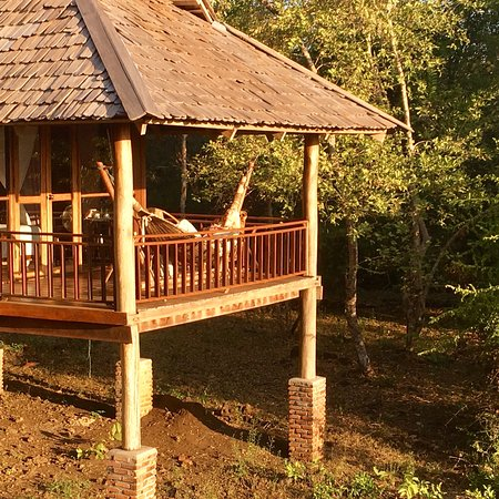 Kingfisher Ecolodge: photo0.jpg