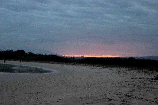 Puerto Villamil, Ecuador: Playa Notturna