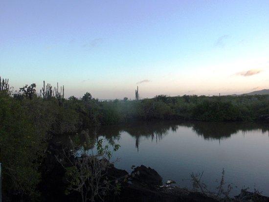 維里亞米爾港照片