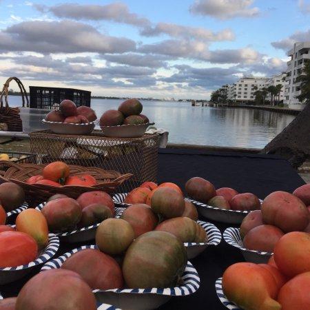 Lake Worth Farmer's Market: photo0.jpg