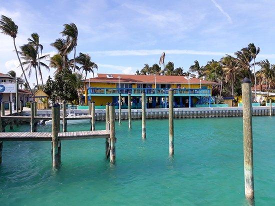 Bimini Big Game Club Resort & Marina : 20180115_141011_large.jpg