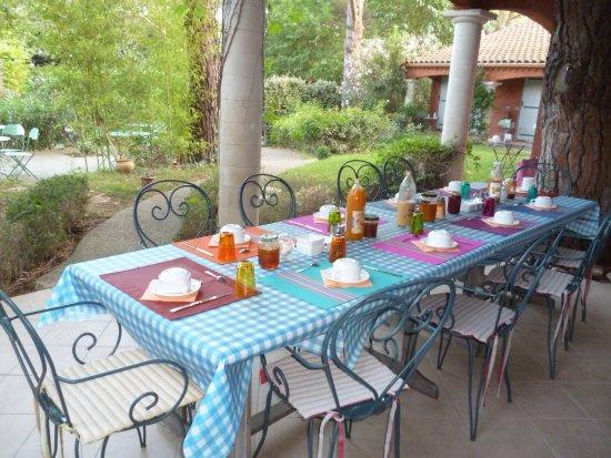 Castillon-du-Gard, Frankreich: Le petit déjeuner servi en terrasse face au jardin
