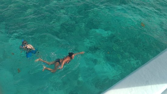 Cayo Coco, Kuba: Lots of fish in the crystal clear water.