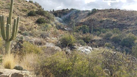 Douglas Spring Trail
