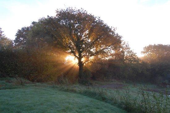 Landscape - Picture of Welcombe Meadow, High Bickington - Tripadvisor