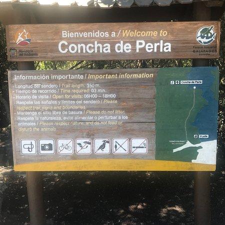 Concha de Perla: photo0.jpg